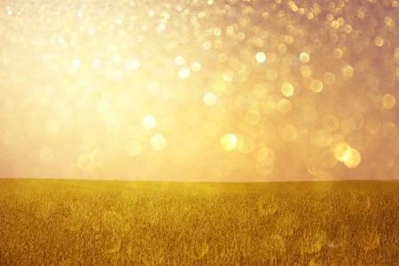 golden background: golden lights abstract background  or summer background of glitter lights  Stock Photo