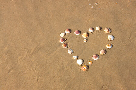 heart shape made from sea shells on sandy beach  room for text  photo