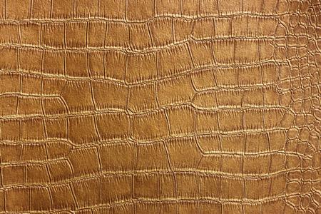 snakeskin: Golden Crocodile Skin Texture and pattern, closeup Stock Photo