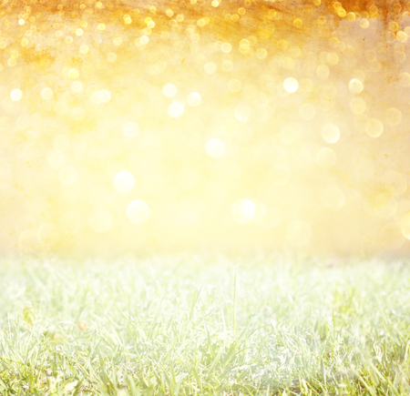 light burst: meadow and golden glitter lights   Stock Photo