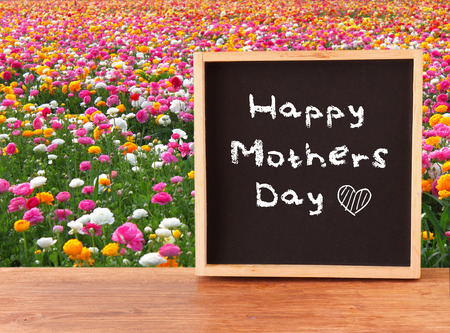 chalkboard with the phrase happy mothers day in front of field of flowers   photo