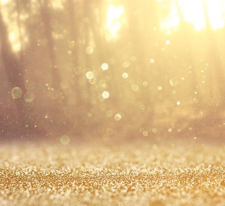 dorado: imagen explosión de la luz entre los árboles del prado filtrada Foto de archivo