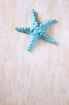 blue starfish over wooden textured board   photo