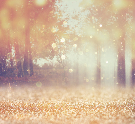 bokeh: blurred abstract photo of light burst among trees and glitter bokeh lights  filtered image and textured