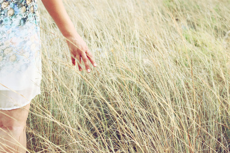 closeup of a woman hand touching tall grass in field. selective focus photo