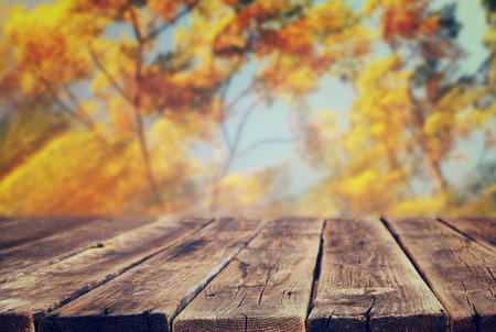image of front rustic wood boards and background of fall leaves