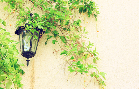 parget: Antique Victorian Outdoor Wall Lamp surrounded by green leaves. filtered image Stock Photo