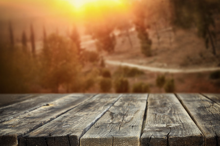 forest products: rustic wooden planks in front of forest landscape in sunset Stock Photo