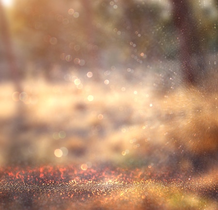vintage background: abstract photo of light burst among trees and glitter bokeh lights. image is blurred and filtered .