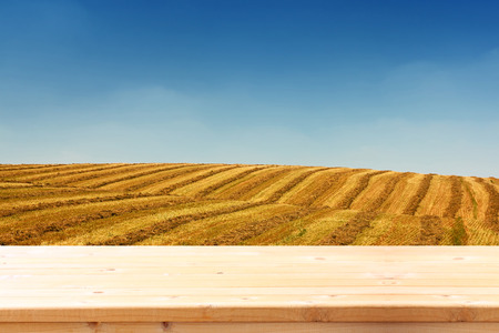image of front rustic wood boards and background of wheat field. ready for product display concept photo