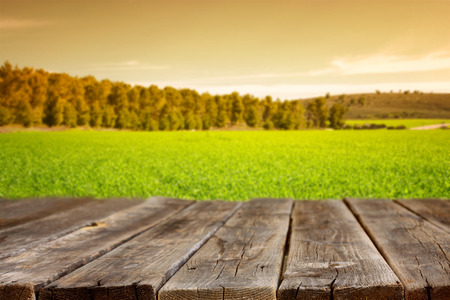 image de conseils avant rustiques en bois et fond de champ de l'herbe verte et les arbres dans la forêt. image est rétro tonique