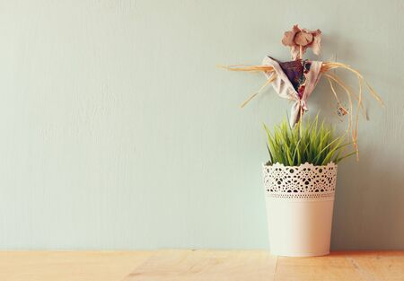 living thing: vintage Flower pot and Scarecrow against mint wall