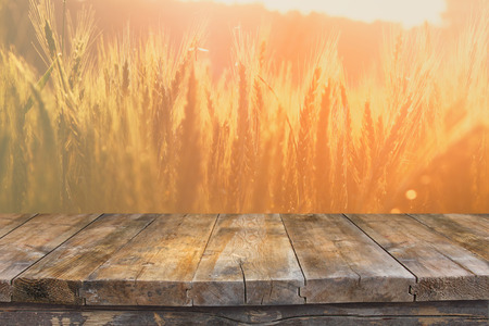 wheat: Wood board table in front of field of wheat on sunset light. Ready for product display montages