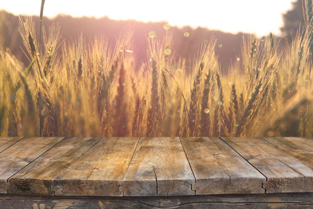 Wood board table in front of field of wheat on sunset light. Ready for product display montages