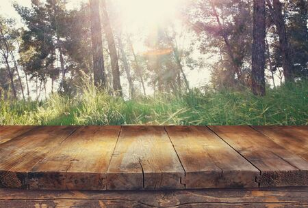 forest products: vintage wooden board table in front of dreamy and abstract forest landscape with lens flare. Stock Photo