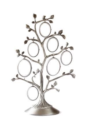 legacy: Image of vintage antique classical frame of family tree isolated on white Stock Photo