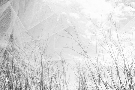 fall winter: double exposure photo of tree branches in fall against sky and textured fabric layer Stock Photo