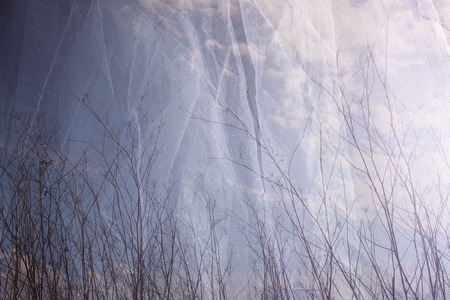 meditative: double exposure photo of tree branches in fall against sky and textured fabric layer Stock Photo