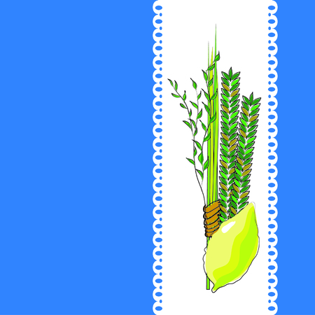 plants species: sukkot - quattro simboli della festa ebraica di Sukkot specie - etrog, salice, di palma, mirto. illustrazione vettoriale.