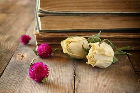 feminine: selective focus image of dry rose, antique necklace and old vintage books on wooden table. retro filtered image Stock Photo