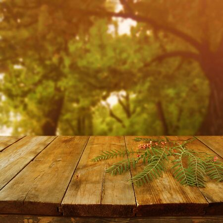 wooden table: vintage wooden board table in front of dreamy autumn abstract forest landscape