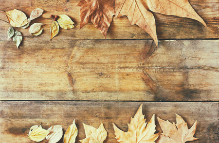 in top: top view image of autumn leaves over wooden textured background Stock Photo