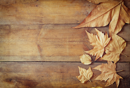top view image of autumn leaves over wooden textured background Banque d'images