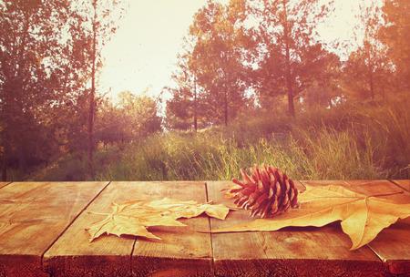 otoñales: Fondo de otoño de las hojas caídas sobre la mesa de madera y backgrond bosque con reflejo en la lente y el atardecer Foto de archivo
