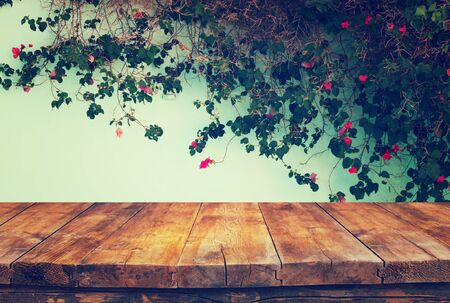 climbing plant: vintage wooden board table in front of climbing plant against the wall Stock Photo
