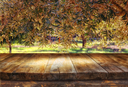 product placement: vintage wooden board table in front of dreamy and abstract forest landscape with lens flare. Stock Photo