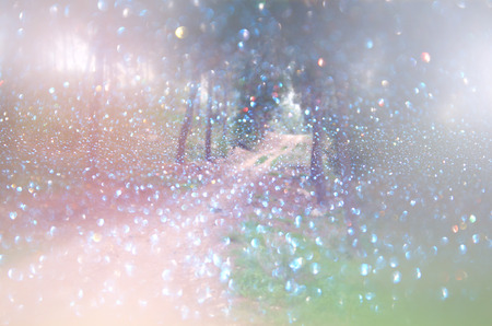 abstract blurred dreamy mystery fairy woods and glitter bokeh lights. filtered image and textured.