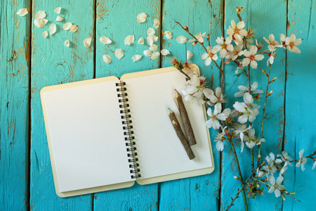 top view image of spring white cherry blossoms tree, open blank notebook next to wooden colorful pencils on blue wooden table. vintage filtered and toned image Stockfoto
