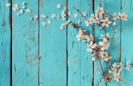 zen attitude: image du blanc de printemps fleurs de cerisier sur bleu table en bois. image vintage filtrée