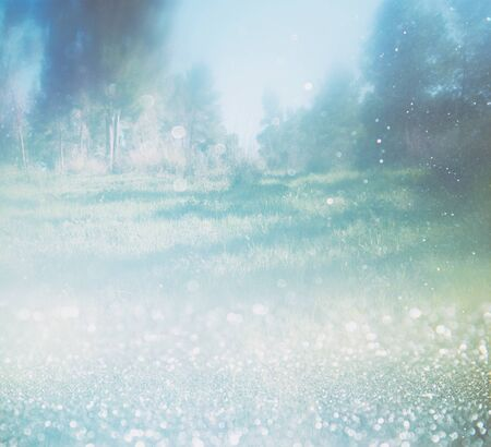 among: abstract photo of light burst among trees and glitter bokeh lights. image is blurred and filtered.