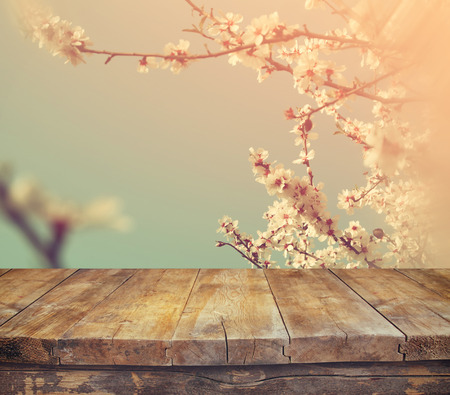 wooden rustic table in front of spring white cherry blossoms tree. vintage filtered image. product display and picnic concept