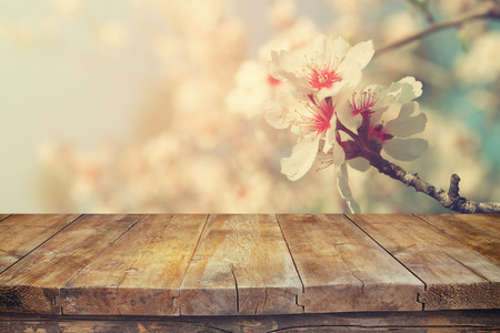 empty table: wooden rustic table in front of spring white cherry blossoms tree. vintage filtered image. product display and picnic concept