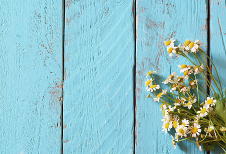 trompo de madera: top view image of daisy flowers on blue wooden table. vintage filtered