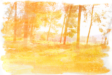 multiple exposure: abstract double exposure image of forest and watercolor texture