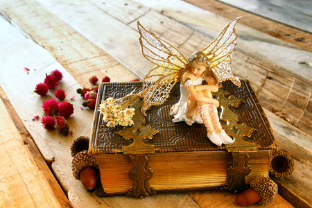 photo story: image of magical little fairy in the forest next to old story book. vintage filtered