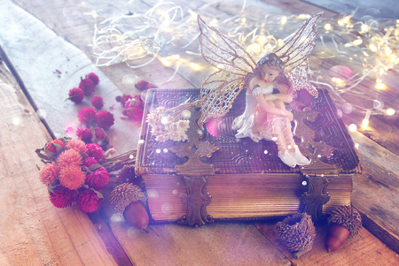 imagen de ensueño de pequeña hada mágica en el bosque junto al antiguo libro de cuentos. vendimia filtrada con la capa de purpurina Foto de archivo