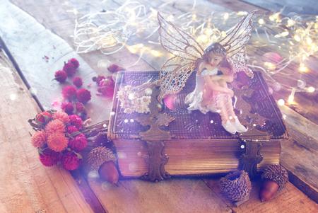 infancia: imagen de ensueño de pequeña hada mágica en el bosque junto al antiguo libro de cuentos. vendimia filtrada con la capa de purpurina Foto de archivo