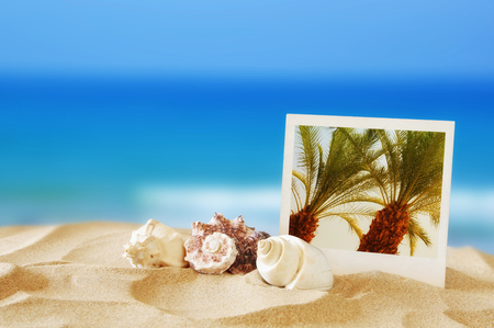 Beach with instant photo in front of summer sea background