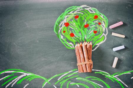 educacion ambiental: Imagen de la visión superior de lápices de madera y dibujo de un árbol sobre la pizarra