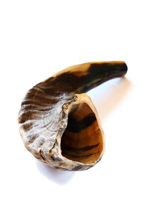 holiday symbol: Shofar (horn) isolated on white. Rosh hashanah (jewish New Year holiday) traditional symbol