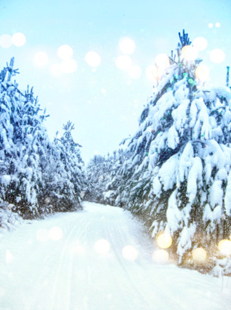 Dreamy and abstract magical winter landscape photo. Glitter overlay Stock Photo