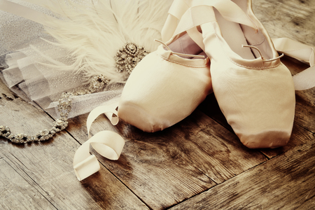 animal tutu: Image of silk pointe shoes and tutu on wooden floor. Vintage filtered Stock Photo