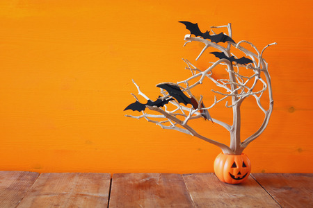 ghost house: Halloween holiday concept. Cute pumpkin tree with bats.