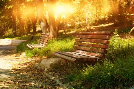 Old lonely bench in the quiet park at sunset light.