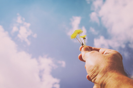 mans hand holding spring flower. Love and romantic concept