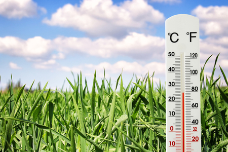thermometer at field of green young grass indicating spring time and weather change Stock Photo